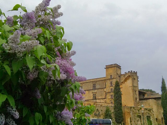Monday in the Luberon