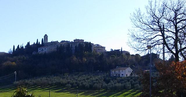 12301401 bartolomei montecchio