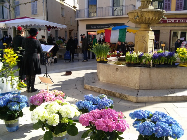 02181502 n even better its market day video too heard yesterday at Aix market