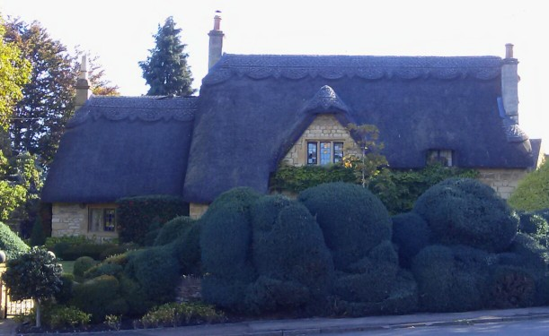 09251501-more-like-a-sleeping-giant-ready-to-wake-up-than-a-hedge