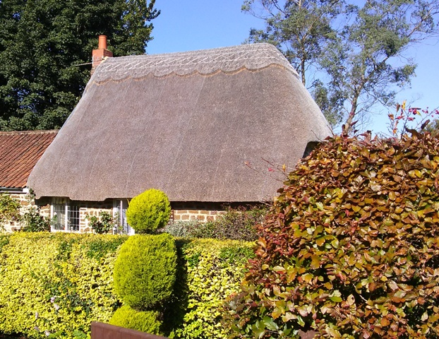 09271502-thatched-beauties