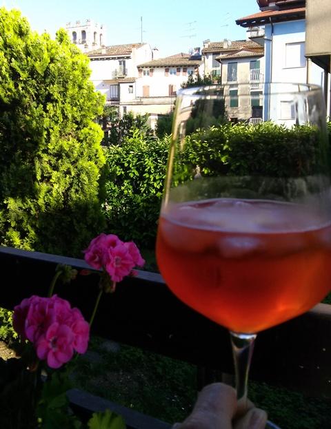 05251603 apero in the garden